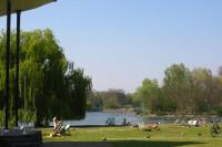 Regents Park bandstand